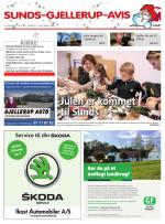 Download publikationen