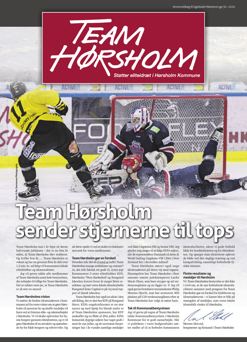 revisor team hørsholm