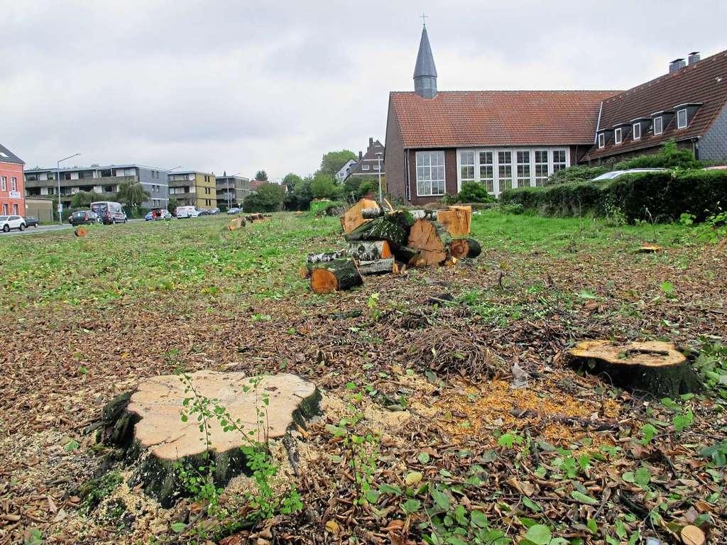 Kahlschlag auf dem Gelände an der Blechecke, das vielleicht einmal mit einem Aldi-Markt bebaut wird.  —Foto: C. Wagner