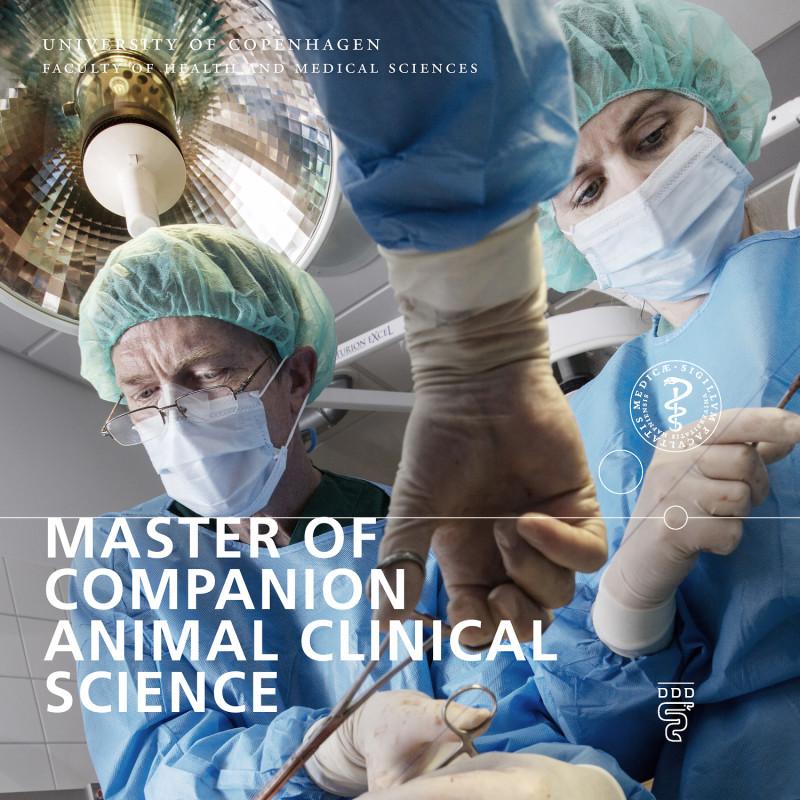 Foto af forside på folder om Master uddannelsen