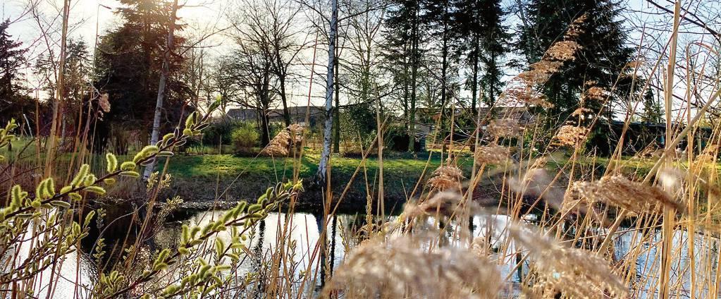 Blick über den Teich: Das neue Areal der Schützen bietet nicht nur freie Bogenschießflächen, sondern auch Lebensraum für Tiere und Pflanzen. BILD: Fademrecht