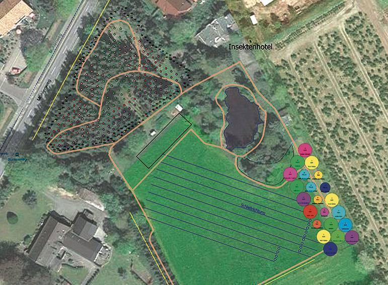 Blick von oben: oben links die neu angepflanzten Bäume, südlich des Teiches trainieren die Bogenschützen, daneben die Obstbaumwiese. Die Laufstrecke der Sommerbiathleten ist braun eingezeichnet. BILD: verein