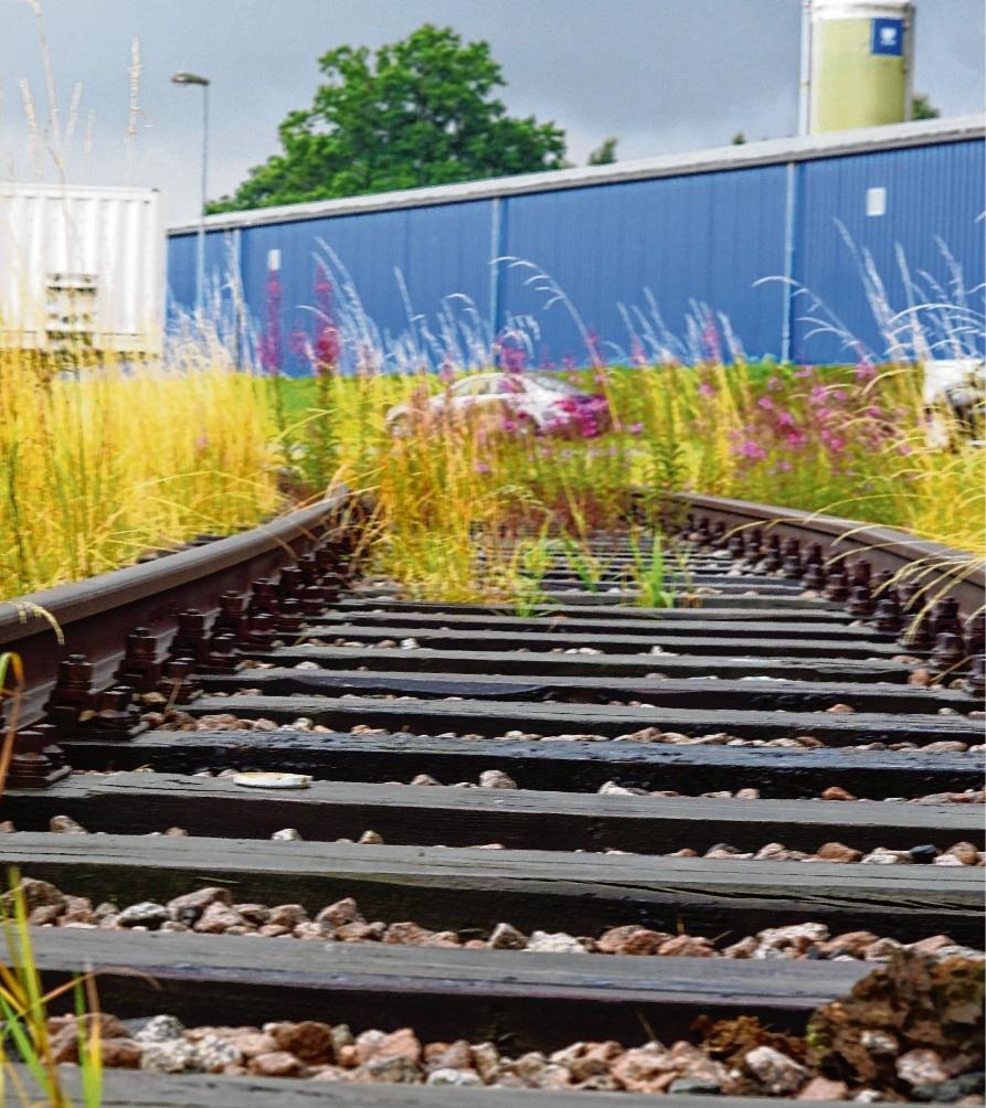 Es fährt noch kein Zug nach irgendwo:   Das  Industriegleis am Oldesloer  Rögen.nie