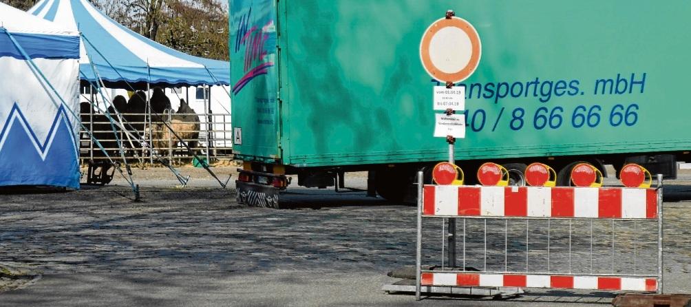 Kamelparkplatz: Vierbeiner blockieren gerade  VierräderNie