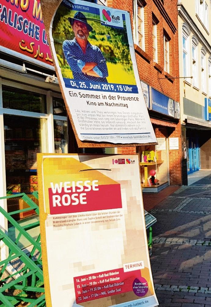 Kritik gibt es an den Plakaten im Oldesloer Stadtbild. Anzahl, Format und Gestaltung kommen nicht gut an. Niemeier