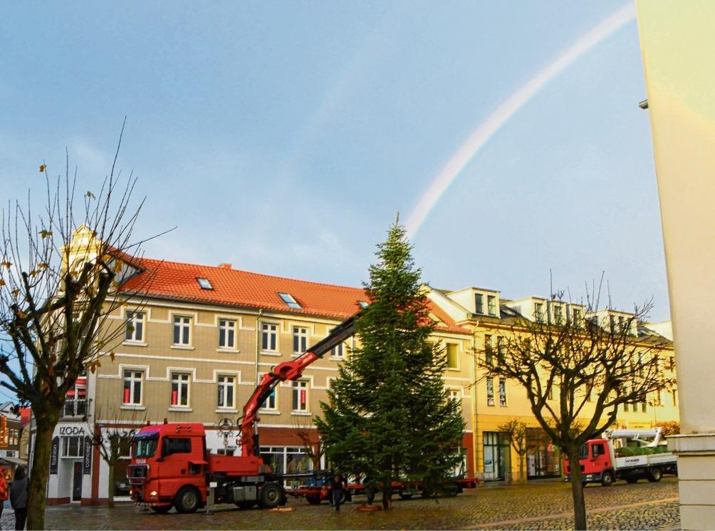 Wie inszeniert: Weihnachtsbaum mit Regenbogen und Taubenbegleitung.  nie