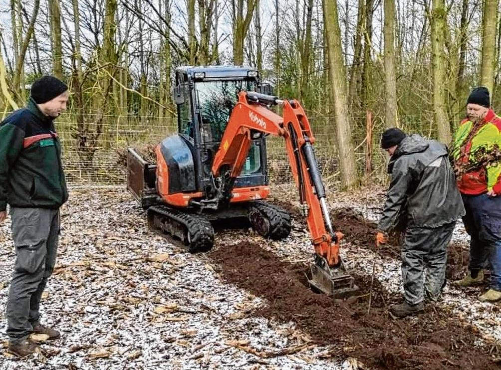 Jens Lübbers (Bezirksförster, l.) und Steffen Burkhardt (Forstbetriebsgemeinschaft, r.) mit einem Forstmitarbeiter beim Pflanzen der Bäume.  Stadt Bad Oldesloe