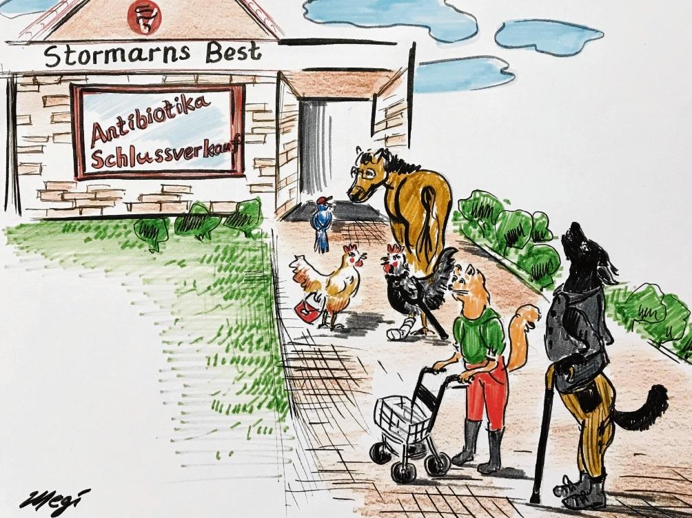 Antibiotika und das liebe Vieh...                                 Karikatur: Megi Balzer