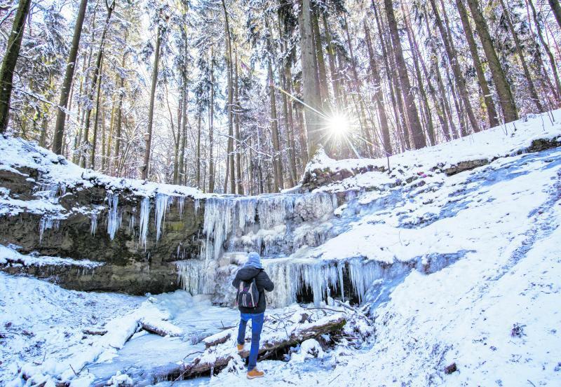 Am Klingenden Wasserfall in Bayern bilden sich bei starkem Frost lange Eiszapfen.